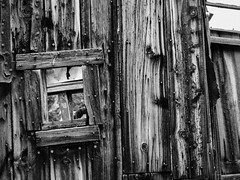 The Window (dolmst) Tags: montana building bw abandoned ghosttown comet miningcamp monochrome