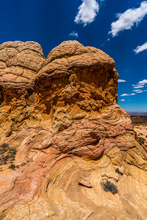 Cottonwood Cove - Coyote Buttes South