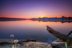 Catch the light and the colors (Thomas Jahnke) Tags: tokina1116 eos760d sunset sunrise colorimage nature brandenburg straussee strausberg lake sea seascape