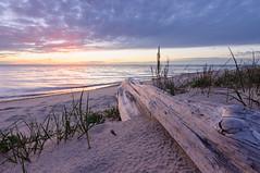 _DSC0450 (phatwhistle) Tags: michigan leelanau beach sunset northport driftwood dunegrass landscape seascape sand sky clouds northernmichigan leelanaucounty tokina wideangle