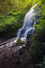 Where Fairies Land (Rajesh Jyothiswaran) Tags: 1224mmf4 fairyfalls forest landscape light longexposure nature silky sony tranquil tropical water woodland foliage greenery river rocks waterfall