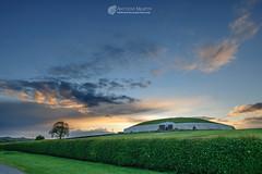 Colourful sky at Newgrange (mythicalireland) Tags: newgrange monument passagetomb síd broga evening dusk sunset red sky clouds colour setting sun hedgerow hawthorn flower tree meath boyne valley ireland landscape