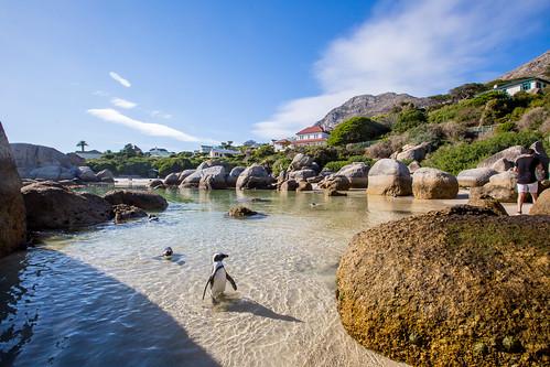 Kaapstad_BasvanOort-100