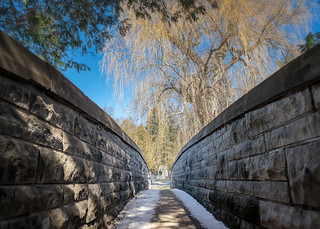 Webster's Falls Park (Hamilton, Ontario)