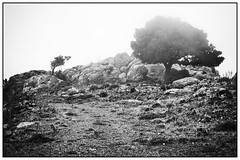 Mountains near Anatoli (Crete) (unukorno) Tags: anatoli fog bw sw blackwhite monochrome frame noise nature trees grece lasithi kreta griechenland mist