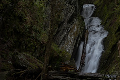 Tannery Falls, Savoy, MA. (koperajoe) Tags: rock savoy silkywater humidity waterfall westernmassachusetts moist rushingwater moss berkshires green ferns longexposure gorge wet