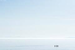 Three (Pamela Saunders) Tags: minimal silhouette ocean vancouver water bluesky highkey