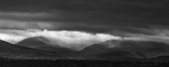 52 - 22 'There's a storm brewing...' (RHughes5) Tags: monchrome black white clouds cloudy dramatic atmosphere rain landscape trees wales snowdonia dark foreboding light nikon d750