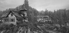 """Abandoned"" (L1netty) Tags: thevanishingofethancarterredux games screenshot house trees blackandwhite gaming reshade pc theastronauts outdoor bw 4k videogame"