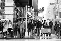 Rain, Times Square, New York (jev) Tags: artq beonebw bnwhunters bnwmaster bwmaniac bwphotooftheday ignewyorkcity instanewyork instablackandwhite leica mydailybnw mynewyork newyorkinstagram newyorklife newyorklike nyc nycexplorers nycphotographer nycphotography nycprimeshot picturesofnewyork rainyday rangefinder streetlife streetphoto streetphotobw streetphotography streetshots streetstyle timesquare topnewyorkphoto travelgram