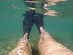 Fernando de Noronha - Brasil (Cleu Corbani) Tags: subacuatico patasderana placer paz agua relax cleucorbani veratraves transparencias