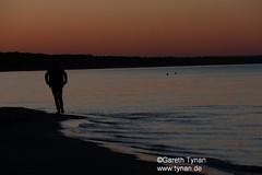 s170525b_3874+_Binz_Strand (gareth.tynan) Tags: rügen binz bird rasenderroland prora putbus park sand sea stimmung