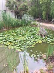 giardino botanico la Cutura (gianni.mello) Tags: giardinobotanico lacutura salento