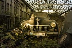 DSC_6136 (Foto-Runner) Tags: urbex lost decay abandonné car auto voitures ancêtres épave