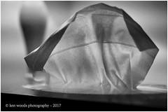 2017_365-135 - Attischo (Kenny Boy1) Tags: tissue folds mono monotone blackandwhite 365 june 2017