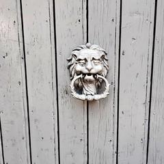 Lyon qui rugît (freddylyon69) Tags: passion promenade buttoir porte door lion lyon