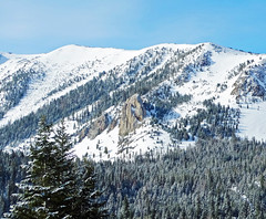 Mammoth Rock, Sierra Nevada, CA 5-16-17 (inkknife_2000 (8 million views +)) Tags: mammothlakesca springsnowstorm treeswithsnow sierranevadarange freshsnowonground waterreflection usa landscape snow dgraham photo california newsnow morningsnow mammothrock forest trees pines firs