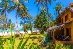 Ocean front suites at Nomad (The Sands Kenya) Tags: africa kenya diani beach