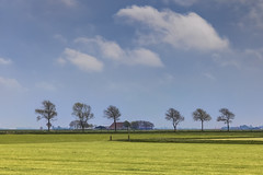 Frisian landscape (Joost10000) Tags: landscape landschaft outdoors scenic beauty field grass gras polder friesland holland netherlands thenetherlands spring clouds trees farm farmhouse canon canon5d eos farmland sky explore hdr