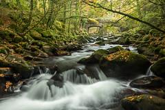 Shaugh Prior Autumn 2016 (RattyBoots) Tags: shaughprior dartmoor autumn november2016 river water naturalbeauty dartmoornationalpark canon canon5d3 canon1635f4