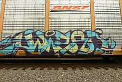 ? (TheGraffitiHunters) Tags: graffiti graff spray paint street art colorful freight train tracks benching benched racks autoracks ribbet