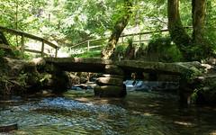 Lady Vale Bridge (Ross Burton) Tags: cardinham src:filename=p1000454