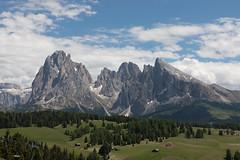 Alpe di Siusi (Guido Barberis) Tags: alpe di siusi sasso lungo piatto sassone dolomiti alto adige tirolo sudtirol montagna berg mountain alpi alps