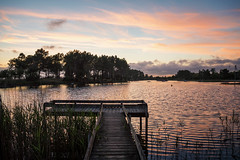 Quiet place. (..Thom..) Tags: olympus hourtin gironde lake country sunset em5mk2 em5² 14150ii 14150