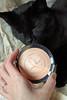 Photo of the day: 18.5.2017 (day 138) (House Of Secrets Incorporated) Tags: loa cat blackcat havanabrown cats pets animal animals blog blogger blogging kittensandsteamlivejournalcom kittensandsteamblogspotcom instagramkittensandsteam twitterhildebcm belgianblogger photooftheday photooftheday2017 aphotoaday2017 dailyphoto dailyphoto2017 dailyphotography dailyphotography2017 dailyphotograph makeup cosmetics beauty bronzer yvesrocher