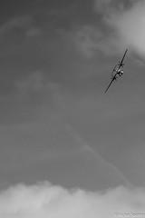 Planes (Viictor B) Tags: rafale morane paris extra 260 cap 10 ryan pt22 p17 stearman tbm 930 fouga magister atr 42habicht texan t6 pitts breguet bucker jungmann beech baron 58 falco patrouille yellow dr 400 sea fury airbus a350 falcon 50 planeur plane planes avion aviation inflight avgeek sky cloud clouds passion combustion speed voltige casque helmet altitude show airshow sun sunset sunrise sunshine toulouse muret airexpo fiends