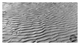 Texture, design by water streams on the sand