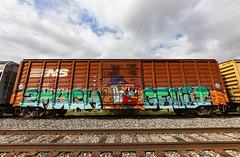 (o texano) Tags: houston texas graffiti trains freights bench benching 2much genji rem nfm