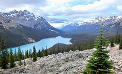 Peyto Lake - Banff National Park, Alberta, CA [explored] (André-DD) Tags: canada kanada urlaub vacation peytolake peyto lake see glacier gletscher wasser water panorama wolken clouds cloud wolke berge mountains berg mountain wanderung hike nature nationalpark banffnationalpark banff alberta peytoglacier creek flus peytocreek cans2s outdoor landscape