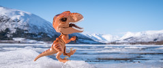 T-Rap over the Ice (Reiterlied) Tags: 18 35mm d500 dslr dino dinosaur frankensteinosaurus ice lego lake legography lens nikon norway photography prime raptor reiterlied stuckinplastic trex toy tyrannosaur velociraptor winter