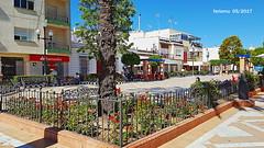 Isla Cristina. Huelva 05 Plaza de Las flores (ferlomu) Tags: arbol ferlomu flor flower huelva islacristina plaza