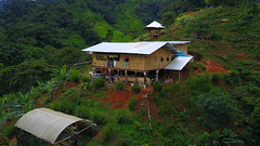 Finca PermaTree May 2017 (yago1.com) Tags: permatree southamerica permaculture sustainable zamorachinchipe green nature