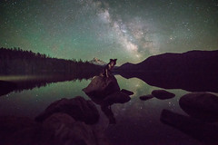 Lost Lake (Justin Knott) Tags: lost lake nikon d800 oregon stars