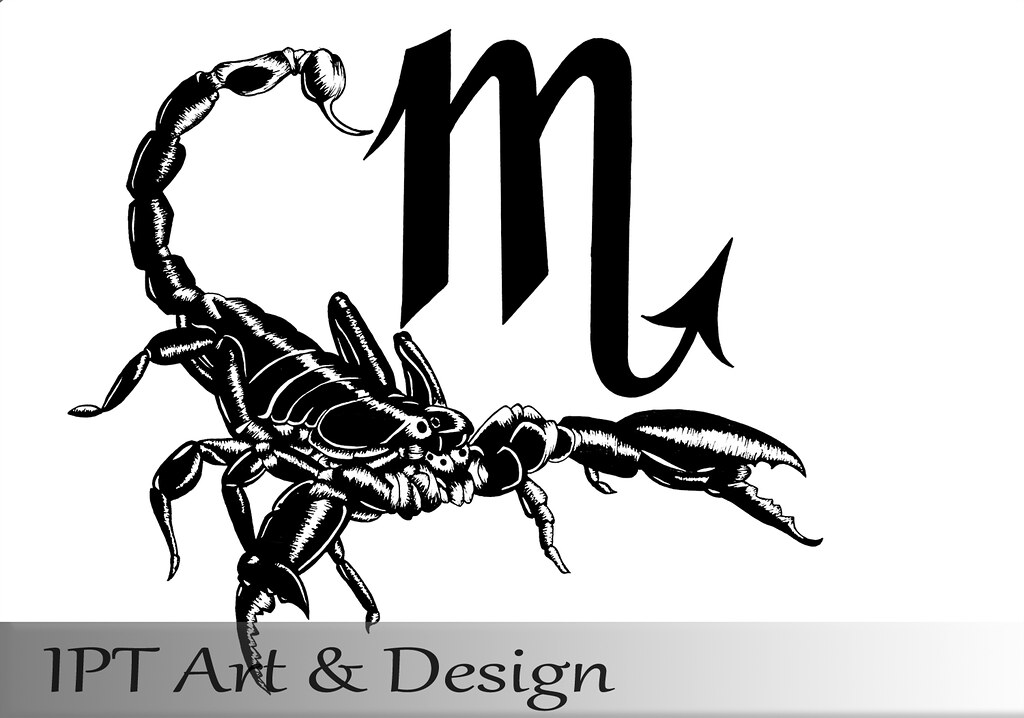 the world 39 s best photos of scorpio and scorpion flickr hive mind. Black Bedroom Furniture Sets. Home Design Ideas