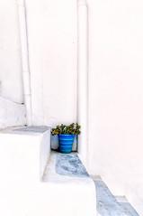 Parikia, Paros (Kevin R Thornton) Tags: d90 blue nikon travel pot parikia mediterranean greece stilllife paros egeo gr