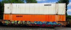 thoe - nomad (timetomakethepasta) Tags: thoe nomad eod bosw wor freight train graffiti art intermodal benching selkirk new york photography e2e