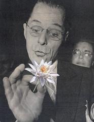 may 31st 2017 - stop to smell (kurberry) Tags: losdiascontados collageaday collage vintageephemera