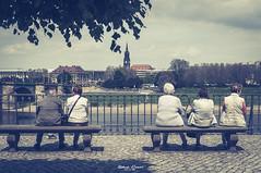 #Viewpoint (graser.robert) Tags: germany perspective robertgraser streetart dresden lighttime person saxonia street streetphotography viewpoint sachsen deutschland de