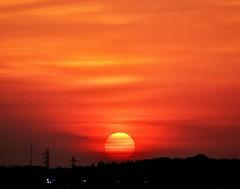 「横じま模様の夕日(先週日曜撮影) ~市川市曽谷の高台から」 Sunset from the Hill of Soya (Taken Last Sunday) Location:Soya,Ichikawa city,Chiba,Japan  こんばんは。 先週日曜、曽谷の高台で撮った夕日をもう1枚お届けします。  この日の夕日は地平線近くの筋雲にかかりながら落ちていったので、夕日に横じま模様が入っていました。 前日同じ場所で見えたグラデーション入りの夕日とまた違うのが面白いですね。  夕日の下に見えるシル