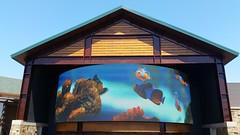 Wonders of Wildlife - Springfield, Missouri (Adventurer Dustin Holmes) Tags: wondersofwildlife televisionscreen big huge curved aquarium fish bassproshops bassproshopsoutdoorworld springfieldmo springfieldmissouri greenecounty missouri 2017 outdoor