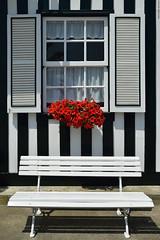 Seat by the window. (Carlos Arriero) Tags: seatbythewindows ventana banco asiento seat carlosarriero composición composition costanova portugal europe europa viajar travel nikon d800e tamron 2470mm 2470f28 fineart asientojuntoalaventana