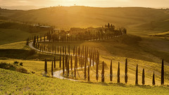 Agriturismo Baccoleno, golden hour (pixellesley) Tags: italy val dorcia farmhouse winding drive cypruss trees farmland sundown goldenhour landscape lesleygooding