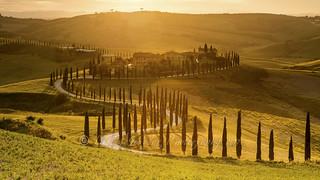 Agriturismo Baccoleno, golden hour
