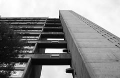 Urban walk 20 May 2017: Lewisham to Mile End 71 (neil mp) Tags: london towerhamlets poplar e14 balfrontower balfron ernőgoldfinger goldfinger modernism brutalism c20soc twentiethcenturysociety brownfieldestate harca londonewcastle blackwalltunnelapproach stleonardsroad andrewstreet blackandwhite bnw monochrome architecture servicetower liftshaft concrete