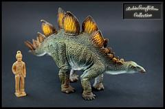 Stegosaurus  ( V2 ) (RobinGoodfellow_(m)) Tags: stegosaurus collecta v 2 version