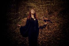 Lady Hawk (sophie_merlo) Tags: bird birds hawk birdofprey falconry model redhead beauty beautiful fantasy gothic